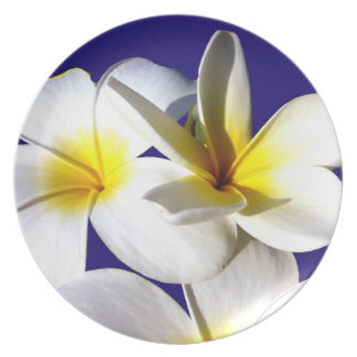 la planta del ti florece back.jpg azul blanco amar plato