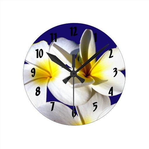 la planta del ti florece back.jpg azul blanco amar reloj