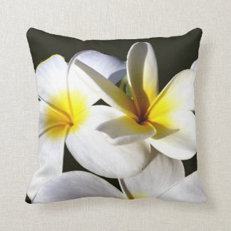 la planta del ti florece back.jpg negro blanco ama almohadas
