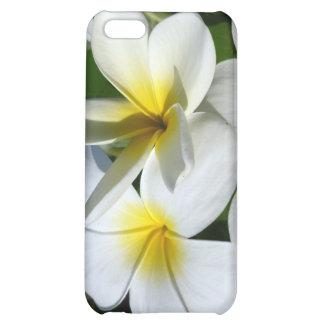 la planta del ti florece blanco amarillo