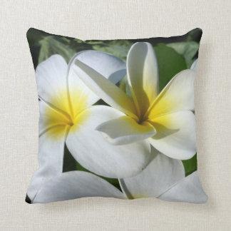 la planta del ti florece blanco amarillo almohadas