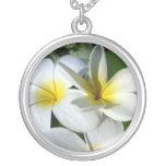 la planta del ti florece blanco amarillo colgante
