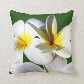 la planta del ti florece la parte posterior blanca almohada