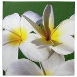 la planta del ti florece la parte posterior blanca servilleta imprimida