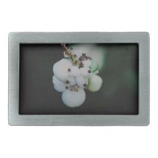 La planta redonda blanca da fruto macro hebillas cinturón rectangulares