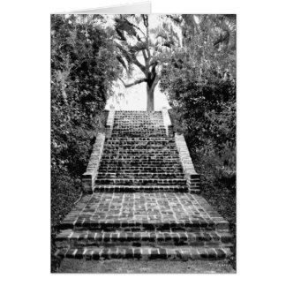 La plantación meridional inspiró Notecard Tarjeta Pequeña