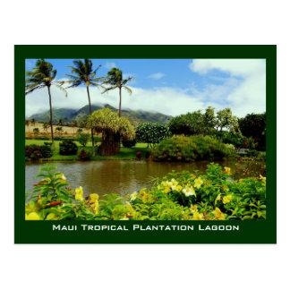 La plantación tropical de Maui cultiva un huerto Postales