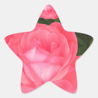La PLANTILLA color de rosa DIY del manojo de la Pegatina En Forma De Estrella