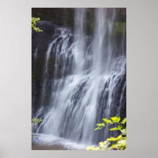 La plata cae las caídas medias de Oregon del valle Póster