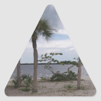 La playa #4 del pirata pegatinas trianguladas