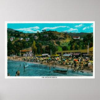 La playa de baño en Avalon, isla de Catalina Póster