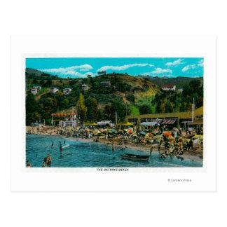 La playa de baño en Avalon isla de Catalina Postal