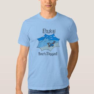 ¿La playa de Ehukai dio una palmada a Wipeout de Remera