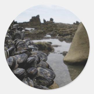 La playa de Newport Muscles durante la bajamar Etiquetas Redondas