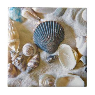 La playa descasca el tema #1 azulejo cuadrado pequeño