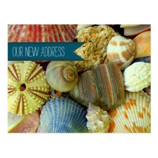 La playa descasca las nuevas postales costeras del