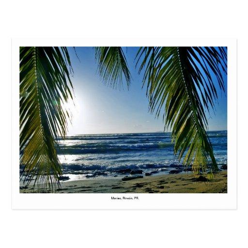, la playa tarjetas postales