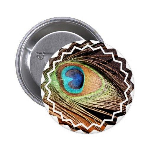 La pluma del pavo real diseña alrededor del botón pins