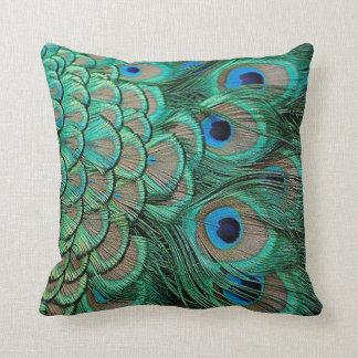 la pluma del pavo real encajona la almohada cojín decorativo