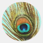 La pluma del pavo real fijó 1107 pegatina redonda