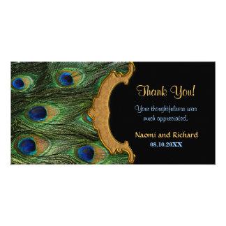 La pluma del pavo real le agradece tarjetas fotograficas