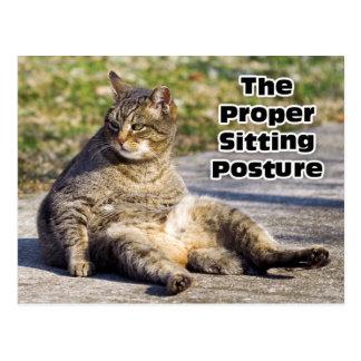La posición sentada apropiada postales