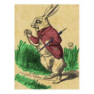 La postal blanca del conejo