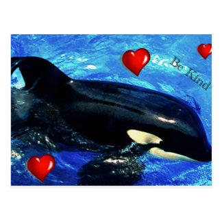La postal de la imagen de la orca con los
