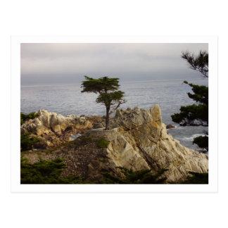 La postal solitaria de Chipre
