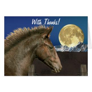 La potra y la luna españolas del mustango le agrad felicitaciones