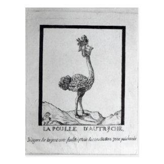La Poulle d'Autriche' Postcard