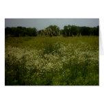 La pradera florece la tarjeta