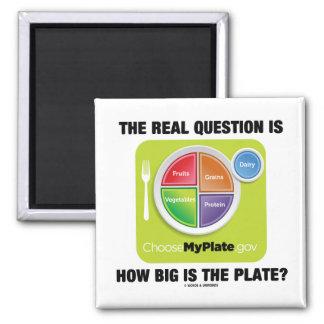 ¿La pregunta real es cómo es grande es la placa? Imán Para Frigorífico