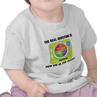 ¿La pregunta real es cómo es grande es la placa Camiseta