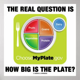 ¿La pregunta real es cómo es grande es la placa? Póster