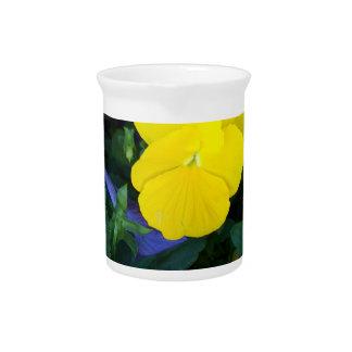 La primavera amarilla del pensamiento florece la jarrón