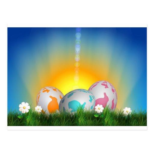 La primavera animal linda florece el conejito de p tarjetas postales