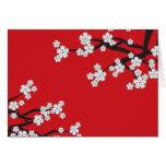 La primavera blanca de Sakura de las flores de cer Felicitaciones