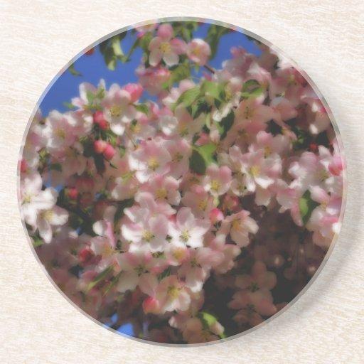 La primavera blanca rosada florece práctico de cos posavasos cerveza