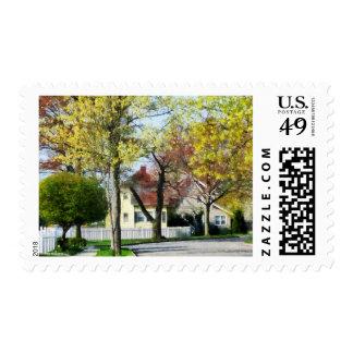 La primavera comienza en los suburbios sellos