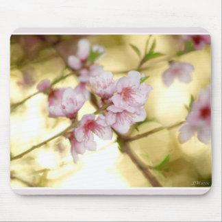 La primavera comienza tapete de ratón