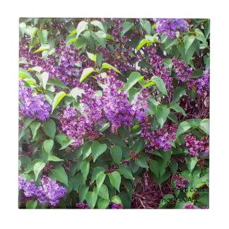 La primavera de PhotosNArt de MClairArt florece la Azulejo Cuadrado Pequeño