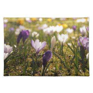 La primavera de prado con azafrán en Gegenlicht Manteles Individuales