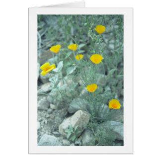 La primavera del desierto florece la tarjeta de fe