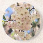 La primavera delicada florece práctico de costa fl posavasos diseño