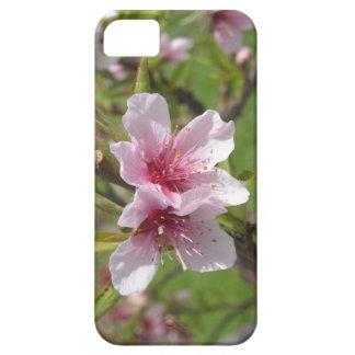 La primavera está aquí iPhone 5 carcasa