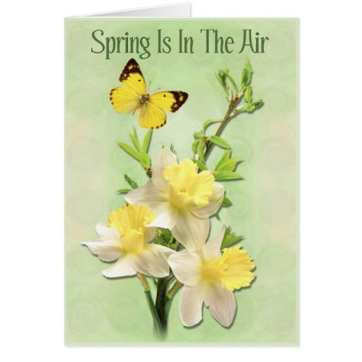 La primavera está en el aire tarjeta