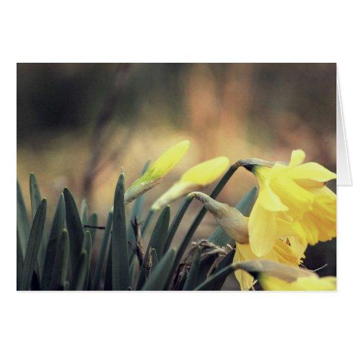 ¡La primavera está en el aire! Tarjeta De Felicitación