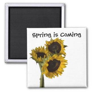 La primavera está viniendo imanes