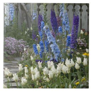 La primavera florece a lo largo de una trayectoria azulejo cuadrado grande